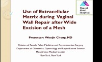 Use of Extracellular Matrix During Vaginal Wall Repair After Wide Excision of a Mesh